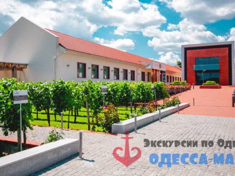 Экскурсия по «Центру культуры вина Шабо» из Одессы